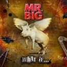 Mr. Big :: What if...