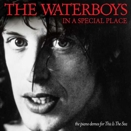 The Waterboys :: In a special place